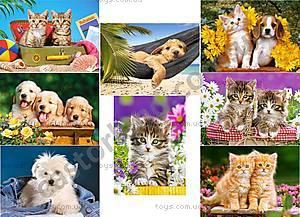 Детский пазл Castorland «Животные», 120 деталей, 2022