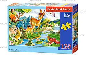 Детский пазл Castorland midi «Сказки», 120 деталей, 2404