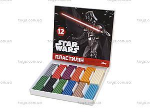 Детский пластилин Star Wars, 12 цветов, Ц557008У, купить