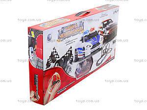 Детский игровой трек «Гонка чемпионов», TR-01, игрушки