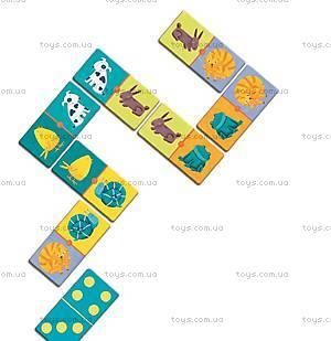 Детское домино «Цвета животных», DJ08111, купить