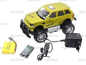 Джип на радиоуправлении «4Х4», 333-4T22, toys