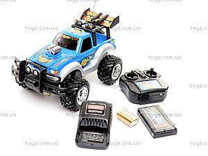 Джип на радиоуправлении «Шторм», 3012/HQ5555, детские игрушки