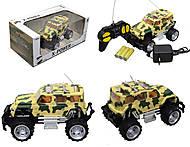 Джип на радиоуправлении X-Power, 2012-1С2С3С5С6С