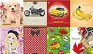 Дневник ученический с цветной обложкой 40 листов, ТЕ102683, магазин игрушек