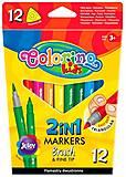 Двухсторонние фломастеры трехгранные Brush&Fine tip 2 в 1 12 цветов Colorino, 92500PTR, цена