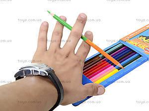 Двусторонние цветные карандаши, 12 штук, HW14-054K, фото