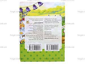 Детская книжка «День рождения», Талант, фото
