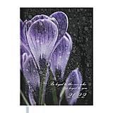 Ежедневник датированный 2022 POSH, A5, черный, BM.2118-01, Украина