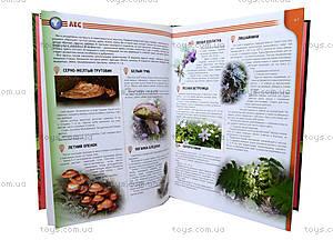Энциклопедия «Атлас животных и растений Украины», Талант, купить