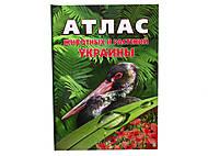 Энциклопедия «Атлас животных и растений Украины», Талант, фото