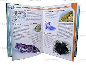 Энциклопедия для детей «Атлас жителей морей и океанов», Талант, фото