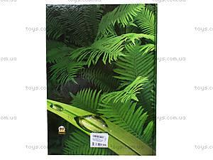 Энциклопедия для детей «Атлас животных и растений Украины», Талант, фото