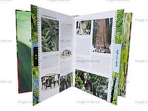 Энциклопедия «Удивительные растения», Талант, фото