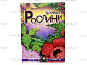 Энциклопедия «Удивительные растения», Талант