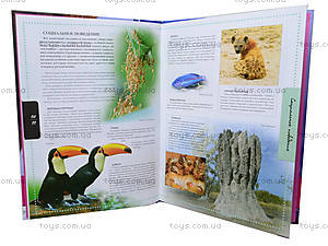 Иллюстрированная энциклопедия «Животные», Талант, купить