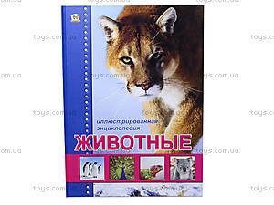 Иллюстрированная энциклопедия «Животные», Талант