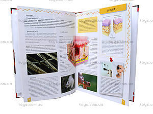 Детская энциклопедия «Тело человека», Талант, фото
