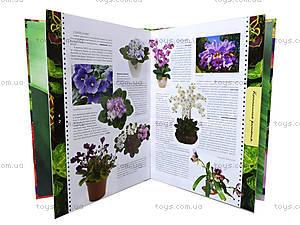 Детская энциклопедия «Удивительные растения», Талант, купить