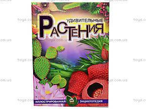 Детская энциклопедия «Удивительные растения», Талант
