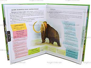 Энциклопедия для любознательных «Животные», Талант, купить