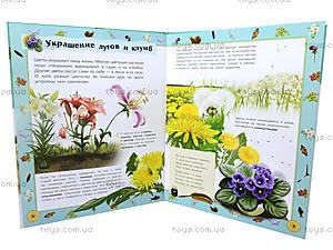 Детская энциклопедия «Природа», К15183Р, фото