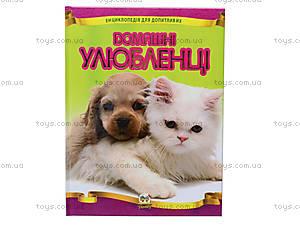 Детская энциклопедия «Домашние любимцы», Талант