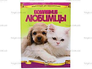 Энциклопедия для любознательных «Домашние любимцы», Талант