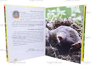 Энциклопедия для любознательных «Мамы и малыши», Талант, купить