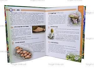 Энциклопедия для детей «Растения и животные Украины», Талант, фото