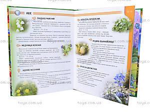 Детская энциклопедия «Растения и животные Украины» , Талант, купить