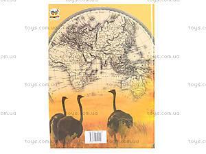 Детская энциклопедия «Атлас животных», Талант, фото