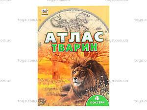 Детская энциклопедия «Атлас животных», Талант, цена