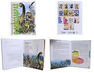 Энциклопедия для любознательных «О динозаврах», Талант, фото