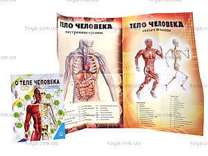 Энциклопедия для любознательных «О теле человека», Талант, цена