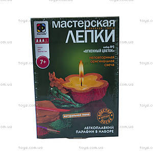 Детский творческий набор «Огненный цветок», 217025, купить