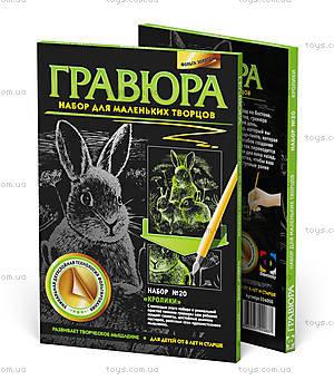 Мини-Гравюра «Кролики», 334050