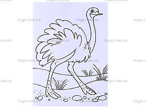 Водные раскраски и обычные «Птицы», Р489002РУ, отзывы