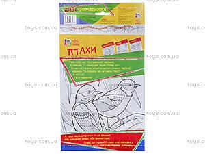 Детские чудо-раскраски «Птицы», С422028У, купить