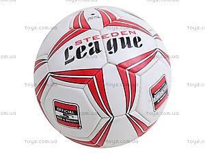 Футбольный мяч Official, SE3001