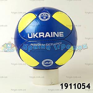 Футбольный мяч «Украина», 1911054