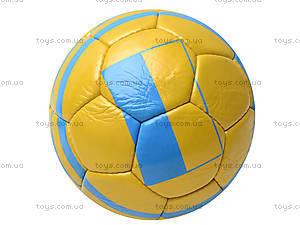 Футбольный мяч Ukraine 2012, 2015-B