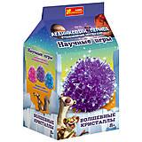 Фиолетовый волшебный кристалл, 12177008Р, фото
