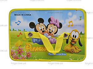 Гармошка, 2 вида игрушки, 9817А3А4, цена