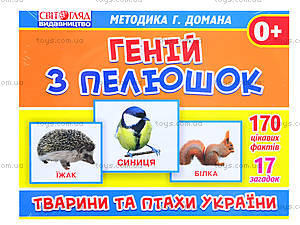 Демонстрационные карточки «Животные и птицы Украины», 1020-213107044У, купить
