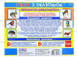 Демонстрационные карточки «Животные и птицы Украины», 1020-213107044У, фото