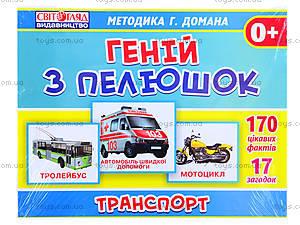 Обучающая игра «Транспорт», 13107045У, фото