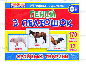 Демонстрационные карточки «Домашние животные», 13107043У, купить