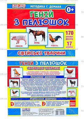 Демонстрационные карточки «Домашние животные», 13107043У