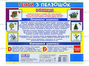 Демонстрационные карточки «Растения», 1014-213107042У, купить